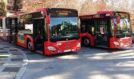 Autobuses Universidad