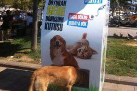 Reciclaje responsable y animales