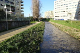 Remodelar el cauce del Río Genil