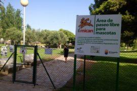 Parque de perros en el centro