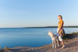 Turismo con perro
