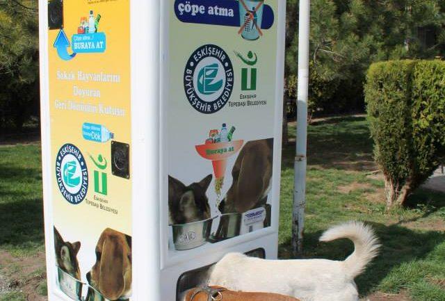 Dispensador de alimentos para perros callejeros