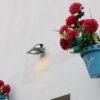 Foro Albaicín Sacromonte – Foro II: Plan de Turismo de la Ciudad