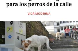 Donación de pienso para perros abandonados a cambio de juguetes artesanales para el tuyo.